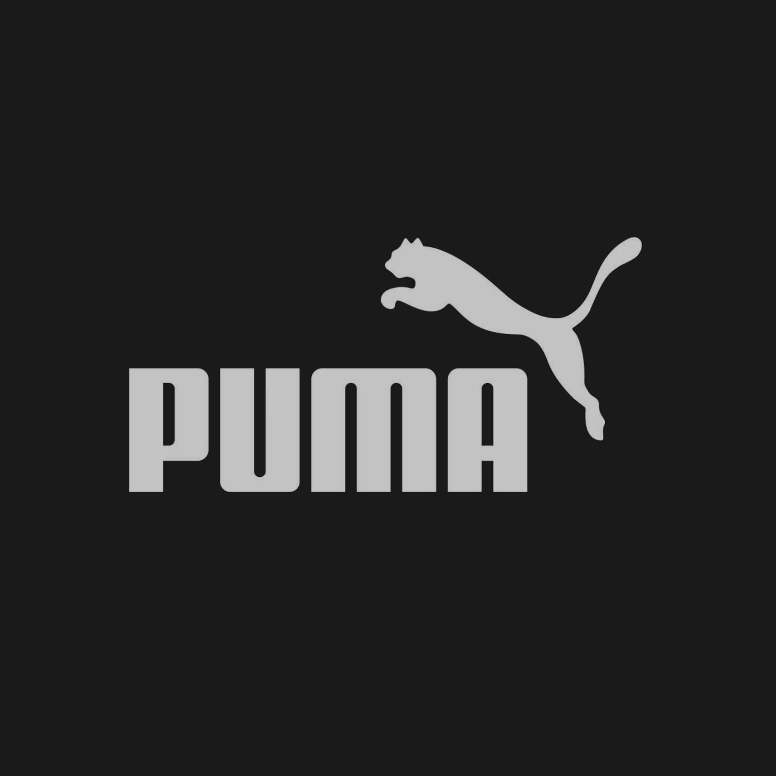 puma-wallpapers-hd-73398-3073039